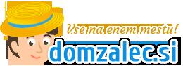 domzalec logo